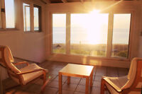 Beautiful Ocean Front Renovated Cottage with Wifi!
