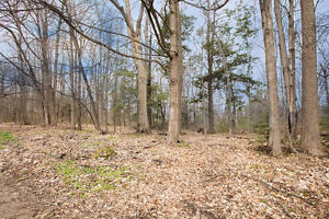 BUILD YOUR DREAM HOME - 61x263 treed lot, 263 Bedford Rd $99,0