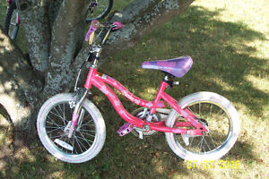 Little Girls Barbie Bike