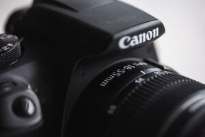 Canon Rebel T6 DSLR and 2 Lenses