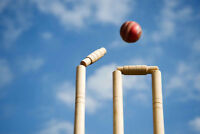 Play cricket in Guelph
