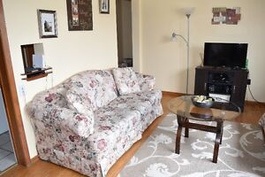 Two Comfy Couches, From a Pet free and non-smoking home