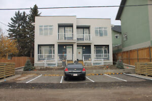Newly Constructed 4-Plex Units Free Rent for November
