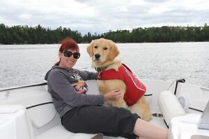 Wanted: Sioux Narrows Lake of the Woods cottage rental