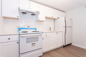 1br - 600ft2 - For Rent: 1 bedroom suite - completely renovated