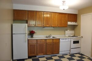 Cozy and spacious 2 bedroom apartment. East SJ.