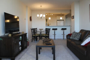 Furnished One Br Apartment - incl utilities