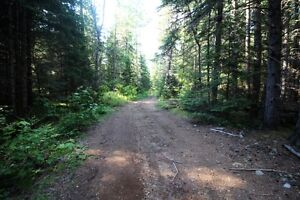 Class B Gravel Pit with Log Home/Cottage MLS# 521580348