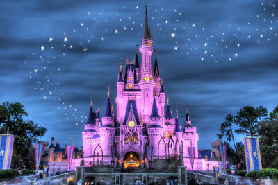 Disney Castle - CANVAS OR PRINT WALL - Castle Canvas Art