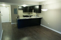 Live at The Oaks - New 2 Bedroom Luxury Condo l