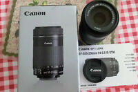 Canon 55-250mm STM IS lens