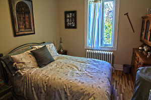 Nice bedroom available May 1 (Metro Snowdon/CDN/NDG/UdeM)