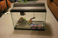 Unused fishtank with accessories