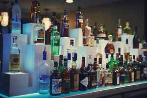 Looking for Experienced Cocktail Bartender St. John's Newfoundland image 2