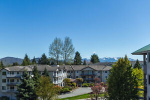 Beautiful Upper Corner Unit w/ Mountain Views!