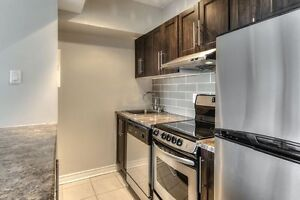 Furnished! Spacious bachelor! Plateau & Lafontaine Park