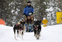 Dogsled Tour Guide