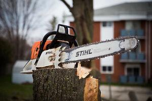 Logging and Tree Service Worker Kitchener / Waterloo Kitchener Area image 1