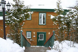 $700 a week/2br-condo/2bathroos/sleeps 6/Mont-Tremblant