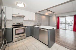 Stunning 2 Bedroom South End Condo for Rent