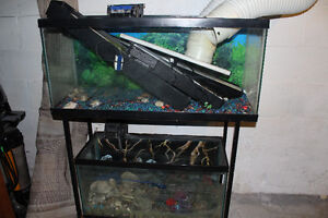 Double Decker stand with 2 fish tanks (30 and 24 gallon)