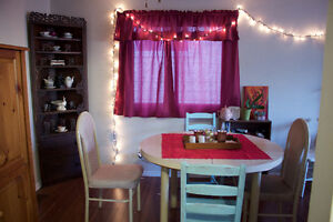 Student Sublet in house from January to April Kitchener / Waterloo Kitchener Area image 4