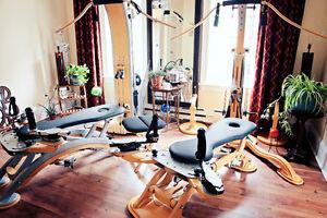 GYROTONIC®—the MOST amazing workout you've never heard of! Kitchener / Waterloo Kitchener Area image 2