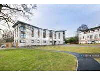 2 bedroom flat in Shaw Road, Aberdeen, AB25 (2 bed)