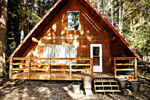 Mt. Baker Lodging - Cabin #24 - BBQ, W/D, PETS OK, SLEEPS-4!