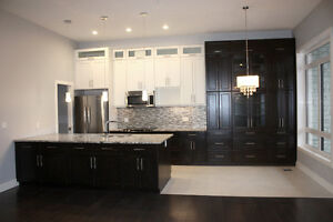 ALL NEW TOWNHOME STYLE CONDO WITH INSUITE ELEVATOR