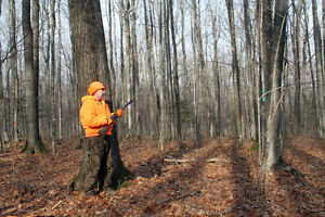 Have vacant land for Hunting? Lease it out!