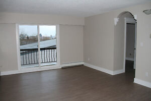 1br - fully renoed apart - Vancouver ( Grandview-Woodland )