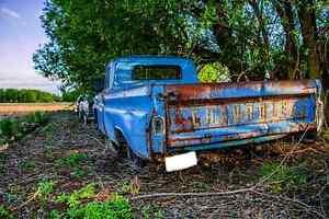Cheap Photo Enhancing Strathcona County Edmonton Area image 1