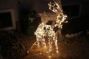 Tall Deer Standing. Christmas Lights. Premium quality. Excellent