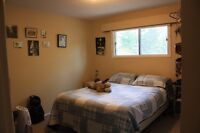 Large, Bright, Clean, 2 bedroom Aptartment
