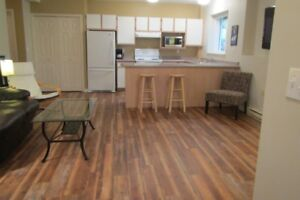 Silver Star Mountain, 1 bedroom furnished suite, mthly Nov-March