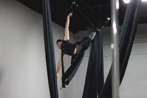 Pole and Aerial Group Fitness Classes / Lessons London Ontario image 4