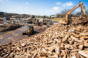 4 guys firewood $219 Dry or winter cut  firewood split 401-3794