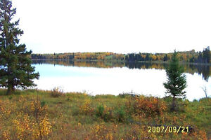 Nature Lovers' Retreat- LAKEFRONT LOT!