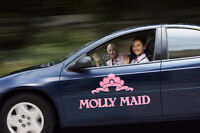 Molly Maid Cleaning professional