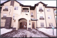 FULLY FURNISHED 2 bed condo in Stonebridge-Avail July 1