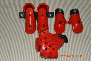 Tae kwon do sparring gear
