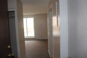 Two Bedroom Apartment with Balcony, Clean, Comfortable, Central Kingston Kingston Area image 4
