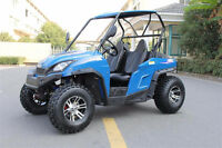 2014 Pitster Pro Double X 200 Children's Dune Buggy