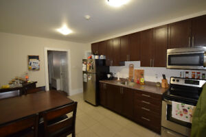 Brand New Renovated 1 Bed Downtown Kitchener