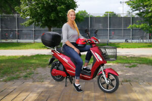 Sunshine Electric Scooter w/ QR Case - SAVE ON DEMO MODELS!