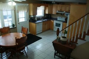 Beautiful two level house for rent - close to UdeM and Hospital