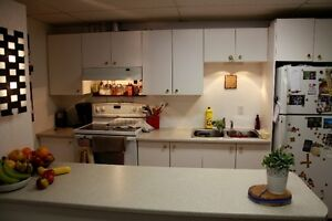 All Inclusive 2 bedroom basement apartment - close to downtown
