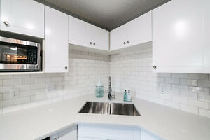 Modern 1 Bed & 1 Bath Condo close to Brewery District & 124 St Edmonton Edmonton Area image 5