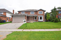 Beautiful renovated House for sale in Guelph ! Must See